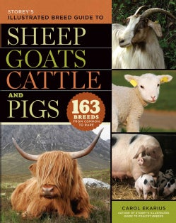 Storey's Illustrated Guide to Sheep, Goats, Cattle and Pigs: 163 Breeds from Common to Rare (Hardcover)