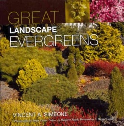 Great Landscape Evergreens (Hardcover)