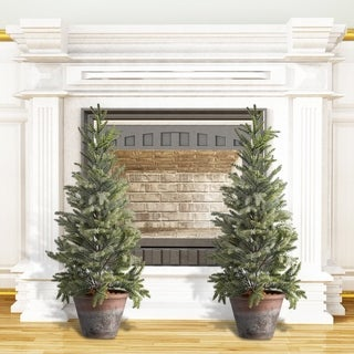 "24"" Potted Frosted Mini Spruce Tree Set of 2"