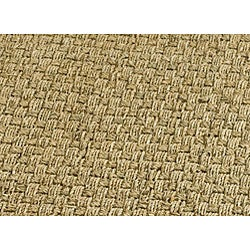 Hand-woven Sisal Natural/ Brown Seagrass Rug (6' x 9')