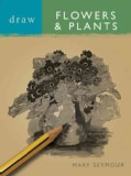 Draw Flowers & Plants (Paperback)