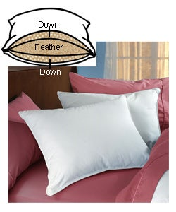 Circle of Down Soft-medium Support Pillows (Set of 2)