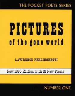 Pictures of the Gone World (Paperback)