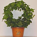Living Green English-ivy Wreath in Oak-leaf-detailed Decorative Tin