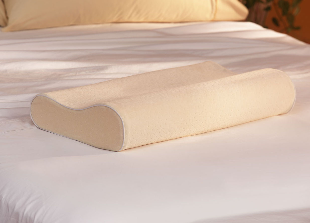 Goose Down Contour Latex Foam Core Pillow Overstock