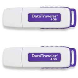 Kingston 4GB DataTraveler Flash Drive (Case of 2)