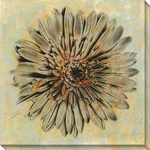 Sara Abbott 'Evoke III' Wrapped Canvas Art