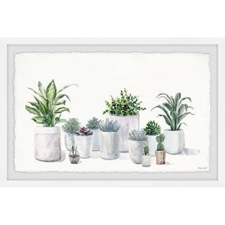 'Indoor Pot Plants' Framed Painting Print