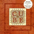 The Cube: Keep the Secret (Paperback)