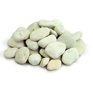 Polynesian Pebble 20 lbs - Natural Decorative Stones Smooth White Rock Landscaping, Gardening, Potted Plants, and Terrariums