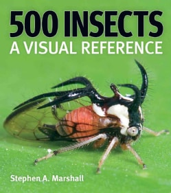 500 Insects: A Visual Reference (Hardcover)