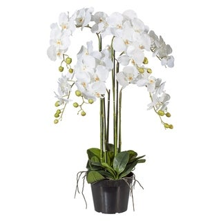 Luxurious Artificial White Potted Orchid Phalaenopsis Arrangement Including Black Nursery Pot, 35 in