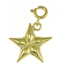 14k Yellow Gold Shining Star Charm