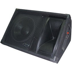 PylePro 800 Watt 15-inch Two-way Stage Monitor