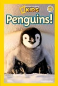 Penguins! (Paperback)