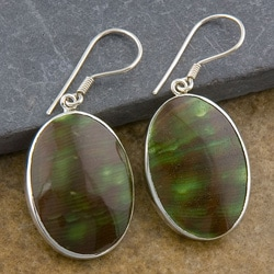 Green Turban Shells Silver Earrings (Indonesia)