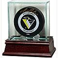 Glass Hockey Puck Display Case