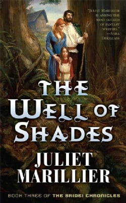 The Well of Shades (Paperback)