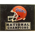 Florida Gators 9x12 Helmet Plaque