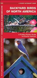 Backyard Birds of N America (Paperback)