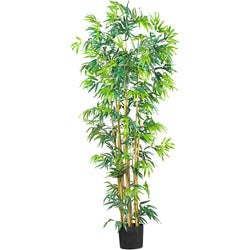 Silk Bambusa 6-foot Tree