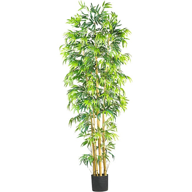 Silk Bambusa 7-foot Tree