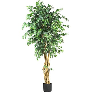 The Curated Nomad Zaius Silk Palace Style 6-foot Ficus Tree