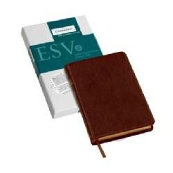 Holy Bible: English Standard Version, Brown, Goatskin Leather, Pitt Minion Reference Bible (Hardcover)