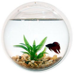 Wall Mount Acrylic Fishbowl Set with Rocks and Artificial Plant