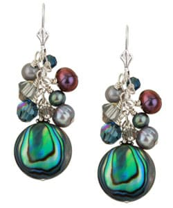 Charming Life Sterling Silver Paua Shell Fringe Earrings