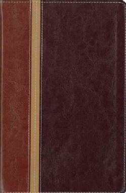 New International Version/ The Message Parallel Study Bible: New International Version, Dark Caramel/Black Italia... (Paperback)