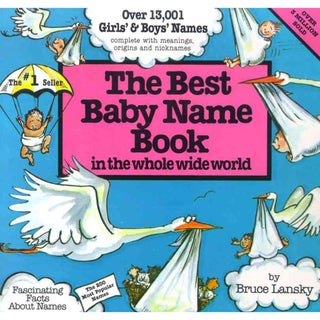 Best Baby Name Book in the Whole Wide World (Paperback)