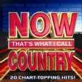 Various - Now That's What I Call Country