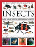The Illustrated World Encyclopedia of Insects: A Natural History and Identification Guide to Beetles, Flies, Bees... (Hardcover)