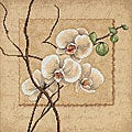 Oriental Orchids Counted Cross Stitch Kit