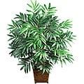 Silk Bamboo Palm with Wood Wicker Basket
