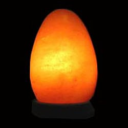 Black Tai Egg-shaped Himalayan Salt Lamp