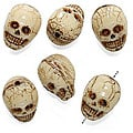 Beadaholique Ivory Color 14.5 mm Czech Glass Skull Pendants (Set of 6)