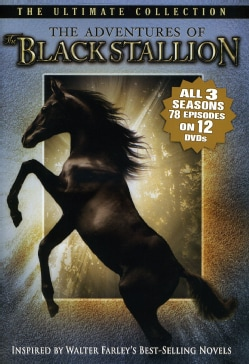 The Adventures Of The Black Stallion (DVD)
