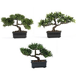 Decorative Bonsai Silk Plant Collection (Set of 3)