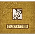 Carpenter 12x12-inch Fan Postbound Album