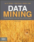 Data Mining: Practical Machine Learning Tools and Techniques (Paperback)