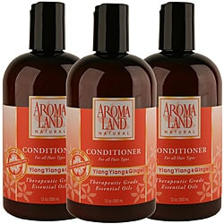 Aromaland Ylang Ylang and Ginger 12-ounce Conditioner (Pack of 3)