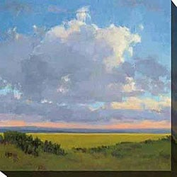 Kim Coulter 'Afternoon Sky I' Giclee Canvas Art