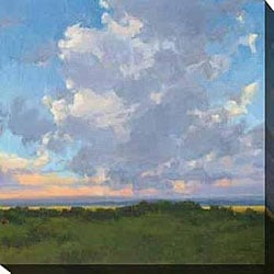 Kim Coulter 'Afternoon Sky II' Giclee Canvas Art
