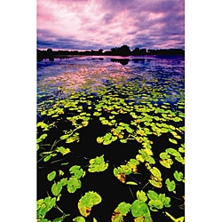 Nathan Lovas 'Lilly Pad Sunset' Canvas Art