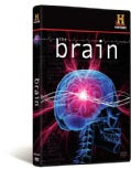 The Brain (DVD)