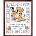 Janlynn Bear Birth Sampler 11x14-inch Stamped