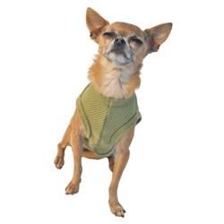 'Aye Chihuahua' Pet Tank