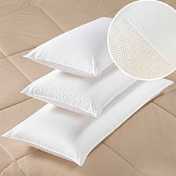 Beautyrest Extra-firm Supportive 100-percent Latex Bed Pillow